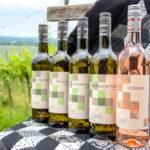Patch & Wine 2021 - Gemeinsames Handnähen